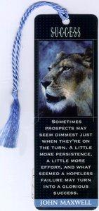 Bookmark: Success