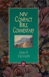 NIV Compact Bible Commentary