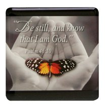 Meaningful Magnet: Butterfly