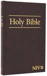 NIV Worship Bible Burgundy