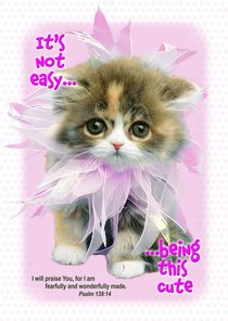 Poster Large: Its Not Easy Being So Cute