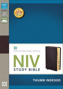 NIV Study Bible Regular Burgundy Thumb Indexed (Red Letter Edition)