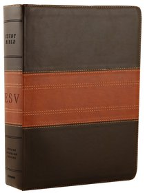 ESV Study Bible Forest/Tan Trail Design (Black Letter Edition)