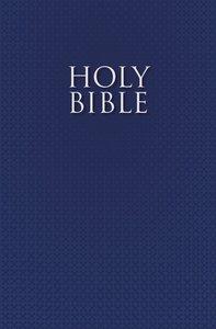 NIRV Bible For Esl Readers Blue