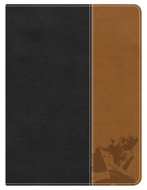 HCSB Apologetics Study Bible For Students (Black/tan Leathertouch)