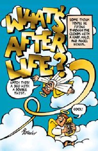 Whats After Life (25 Pack)