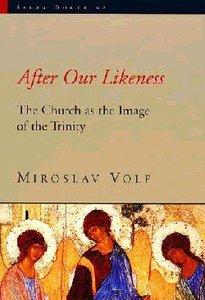 Sacra Doctrina: After Our Likeness (Sacra Doctrina: Christian Theology For A Post Modern Age Series)