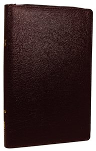 NIV Thinline Zippered Bible Burgundy (Red Letter Edition)