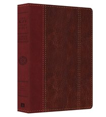 KJV Study Bible Large Print Brown/Burgundy