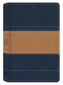 KJV Study Bible Illustrated Edition Blue/Tan