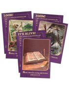 Dlc A6: Bringing the Bible to Life Bible Cards Ages 11-14 (Discipleland Level 6, Ages 11-14, Qtrs Abcd Series)