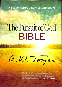 NIV Pursuit of God Bible, the Terra Cotta