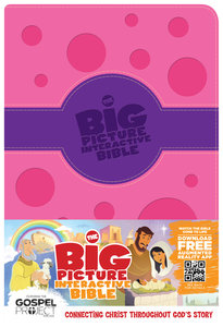 HCSB the Big Picture Interactive Bible For Girls