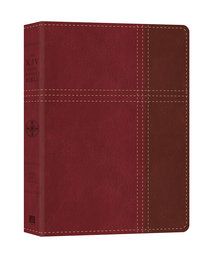 KJV Cross Reference Bible Red/Tan