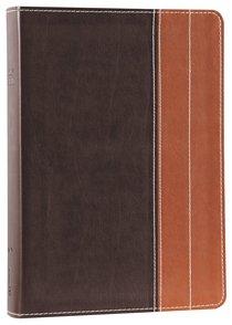NIV Essentials Study Bible Chocolate/Tan