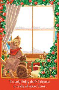 Christmas Boxed Peek Thru Window Cards: All About Jesus (1 John 4:9 Cev)