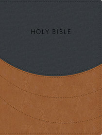 KJV Ministry Essentials Bible Black/Brown