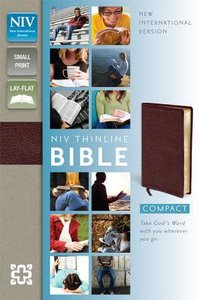 NIV Compact Thinline Bible Burgundy (Red Letter Edition)
