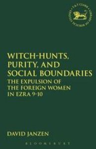 Witch-Hunts, Purity and Social Boundaries (Journal For The Study Of The Old Testament Supplement Series)