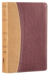 Amplified Holy Bible Compact Camel Burgundy