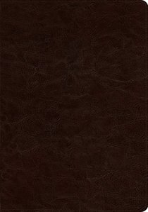 ESV Study Bible Deep Brown