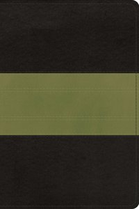 ESV Study Bible Personal Size Charcoal Sage Trail Trutone (Black Letter Edition)