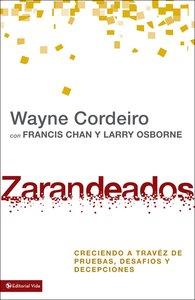 Zarandeados (Exponential Series)