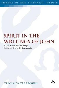 Spirit in the Writings of John (Journal For The Study Of The New Testament Supplement Series)