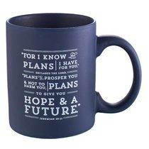Ceramic Mug: I Know the Plans (Navy)