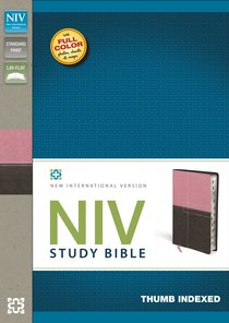 NIV Study Indexed Bible Italian (Red Letter Edition)