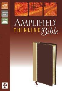 Amplified Thinline Bible Italian Duo-Tone Camel/Burgundy