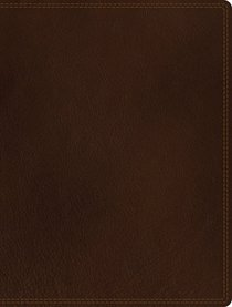 NIV Journal the Word Bible Brown (Black Letter Edition)