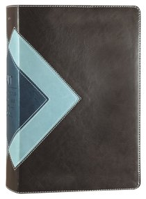 NLT Illustrated Study Bible Teal Brown Tutome (Black Letter Edition)