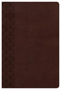 CSB Study Bible For Women Chocolate
