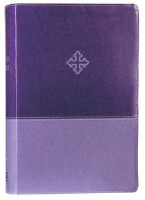Amplified Study Bible Purple (Black Letter Edition)