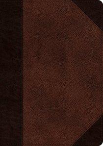 ESV Single Column Journaling Bible Large Print Brown/Walnut Portfolio Design (Black Letter Edition)