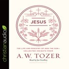 Jesus (Aw Tozer Collected Insights Series)
