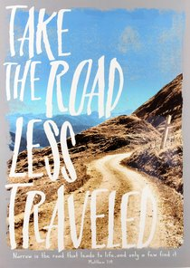 Poster Large: Road Less Traveled