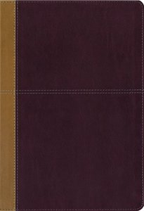 KJV and Amplified Side-By-Side Bible Large Print