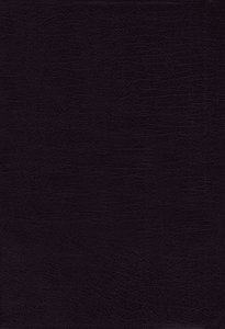 Kjv/Amplified Parallel Bible Large Print