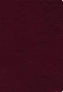 NIV Thinline Bible Large Print Burgundy Indexed Red Letter Edition