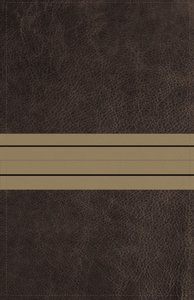 NIV Thinline Bible Giant Print Brown/Tan Red Letter Edition