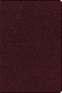NIV Thinline Reference Bible Large Print Burgundy (Red Letter Edition)