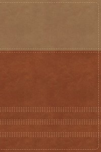 NIV Biblical Theology Study Bible Tan/Brown Indexed (Black Letter Edition)