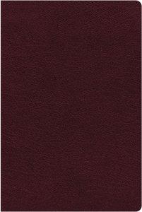 NIV Biblical Theology Study Bible Burgundy (Black Letter Edition)