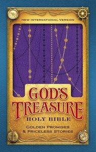 NIV Gods Treasure Holy Bible Amethyst (Black Letter Edition)