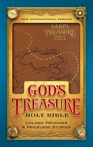 NIV Gods Treasure Holy Bible Dark Tan