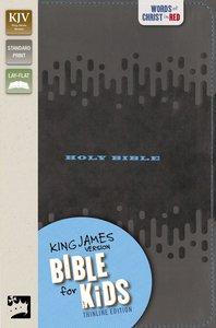 KJV Bible For Kids Charcoal Thinline Edition