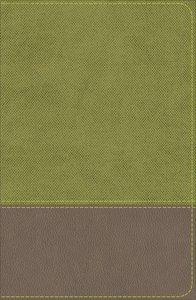 KJV Study Bible For Boys Olive/Brown (Red Letter Edition)