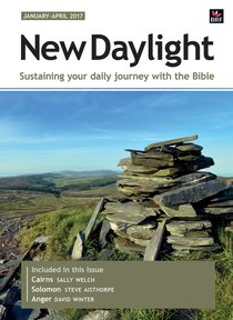 New Daylight Deluxe 2017 #01: Jan-Apr (Large Print)